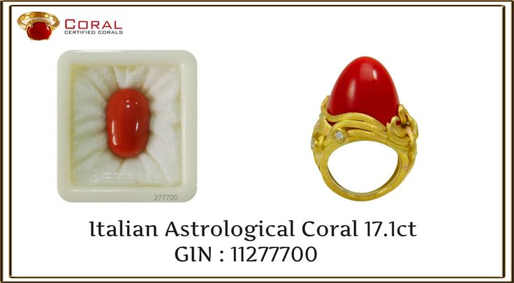 Enhance your #style with this #fascinating #coral #gold #ring from http://coral.org.in/ #jewelry #gemstone #love #beauty #charming #ringlover #luxury