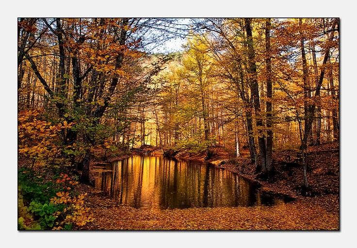 Seven lakes in autumn (Yedi goller/Bolu/Turkei)...