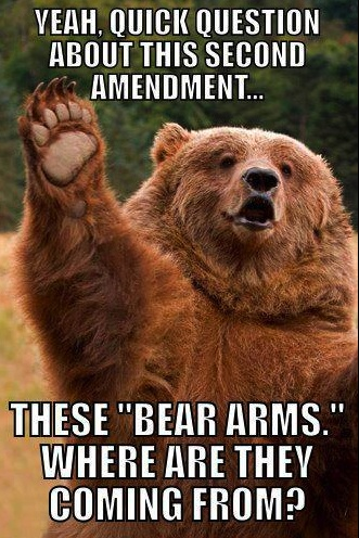 The right to bear arms ...