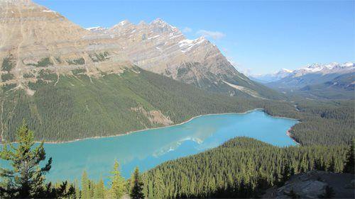 Mijn wonder is dit meer in Canada, Peyto Lake. Wanneer je op dit uitzichtpunt staat kun je alleen nog maar stil zijn en van het mooie uitzicht genieten... Wat een wondere wereld hebben wij toch. Een wereld waarvan ik hoop dat deze nog lang mag blijven bestaan door mijn duurzame steentje bij te dragen! Door: Jacquelien
