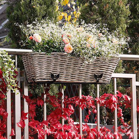 31 besten flowflower bilder auf pinterest garten terrasse g rtnern und verandas. Black Bedroom Furniture Sets. Home Design Ideas