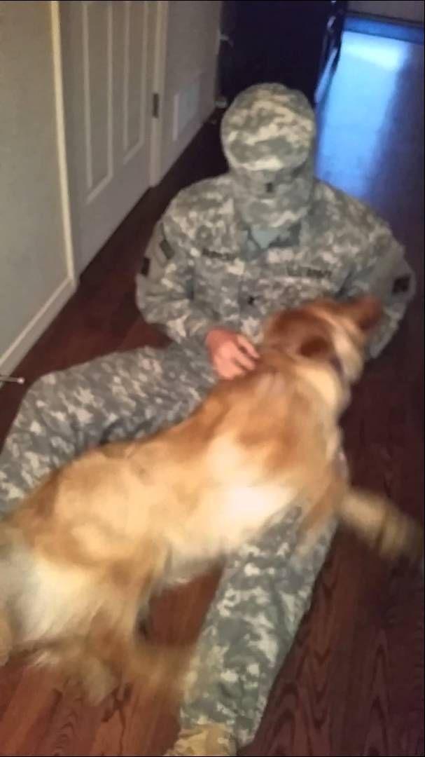 soldado vuelve de la guerra