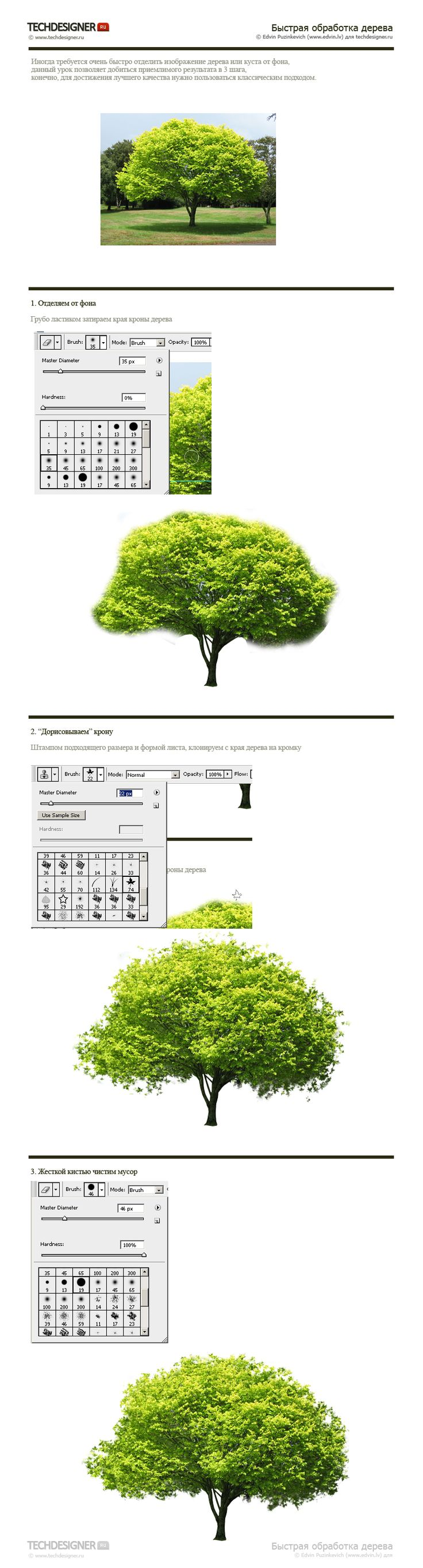 cut out tree