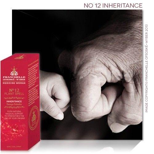 No 12 Inheritance Spell