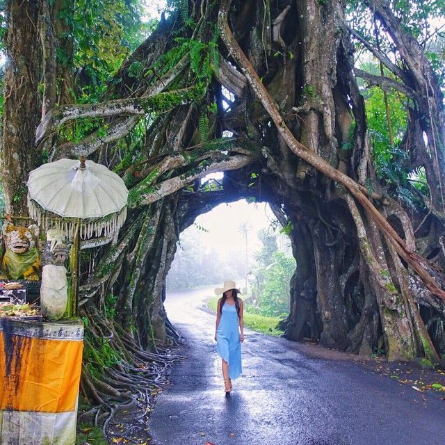 so happy to walk around this area after the rain  ~~~~~~~~~~~~~~~~~~ Loc. Bunut Bolong Temple, Bali: