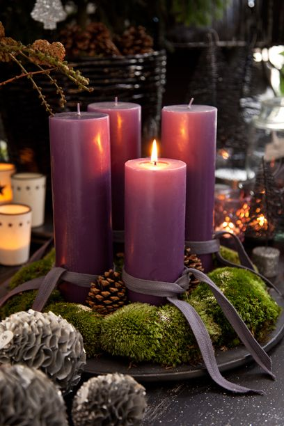 purple candles with moss