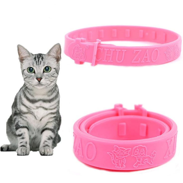 Soft Silicon Pet Flea Tick Repellent Collar //PRICE: 3.00 & FREE Shipping    #microstylist #pets #cats #dogs #accessories #supplies #merchandise #doglover #catslave #freeshipping #worldwide