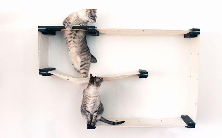 Allestire uno spazio per il nostro gatto non è mai semplice. La soluzione migliore è utilizzare delle mensole per gatti e realizzare una parete attrezzata!