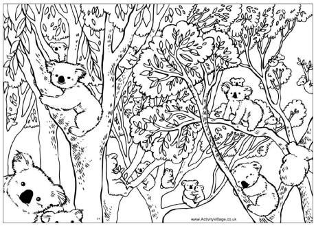Count the koalas puzzle and colouring page