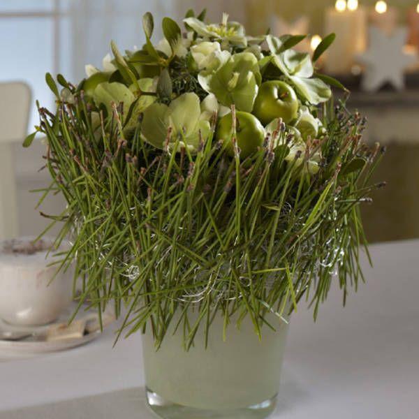 die besten 17 ideen zu koniferen auf pinterest koniferen pflanzen weihnachten t r kr nze und. Black Bedroom Furniture Sets. Home Design Ideas