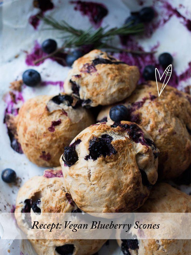 Luchtige scones met een zachte kokossmaak, verse blauwe bessen en rozemarijn. Een feestje om de dag mee te beginnen, vegan blueberry scones!