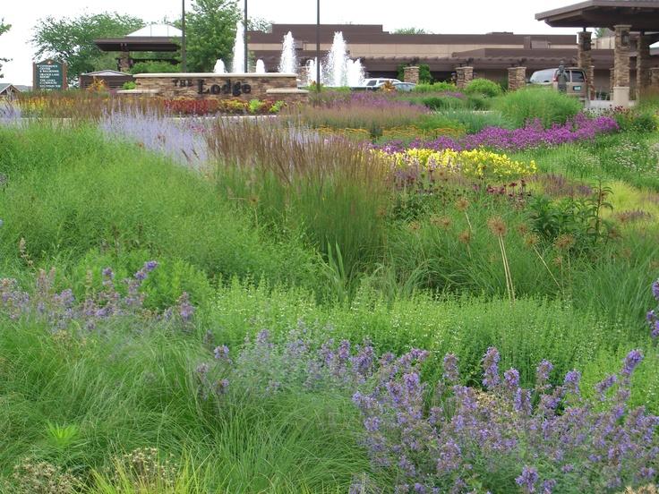 Flower Garden Ideas Wisconsin 53 best know maintenance gardening (tm) developedroy diblik