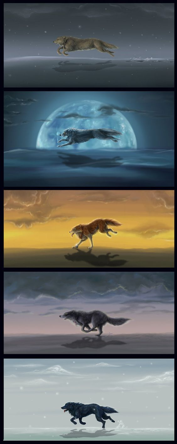 Possible ideas for a wolf tattoo running along the side of my foot (not the top one though):
