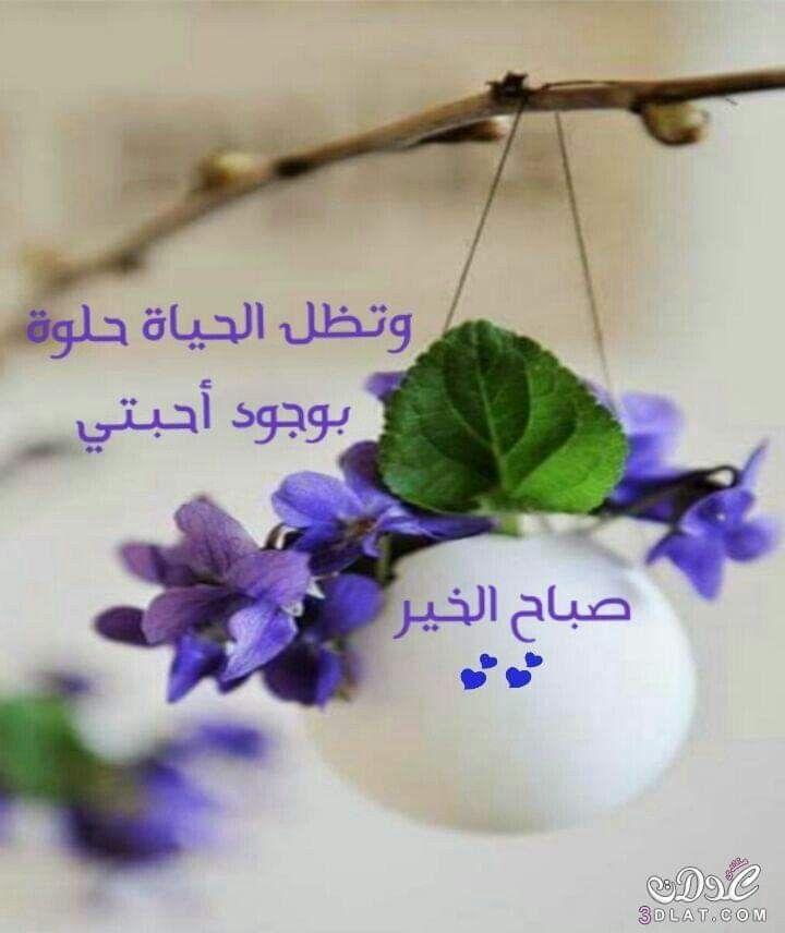أجمل مافي الصباح أن تشكر الله أجمل رفيق لحياتي هو التسبيح أعظم صديق لحياتي هو القرآن Beautiful Morning Messages Good Morning Greetings Good Morning Flowers