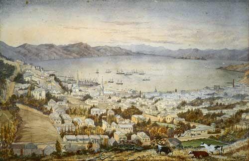 Wellington Harbour (Port Nicholson) and City