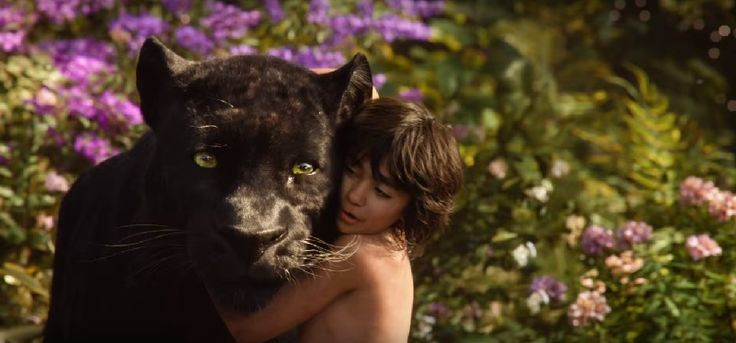 #FilmReview A visual treat you'll remember for a long time #TheJungleBook (Hindi) #ClickToRead