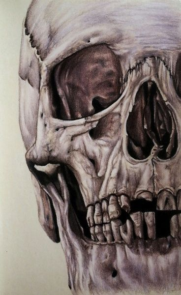 † skull