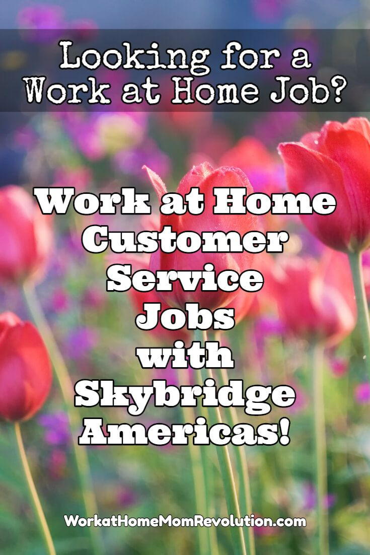 17 best images about work from home ideas work from skybridge americas is hiring work at home customer service agents in minnesota and wisconsin part