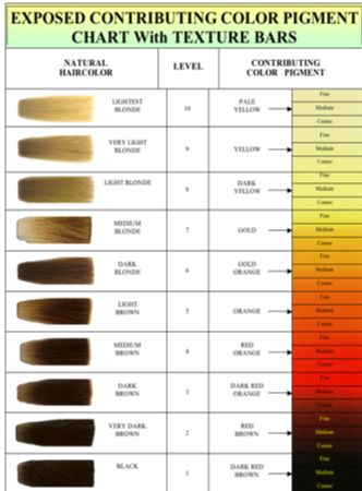 Image Result For Bleach Color Chart Hair Color Chart