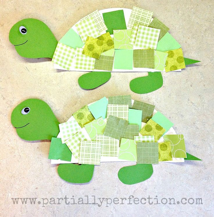 Make cute turtles out of half of a paper plate and multicolored green paper. This easy project is fun for …