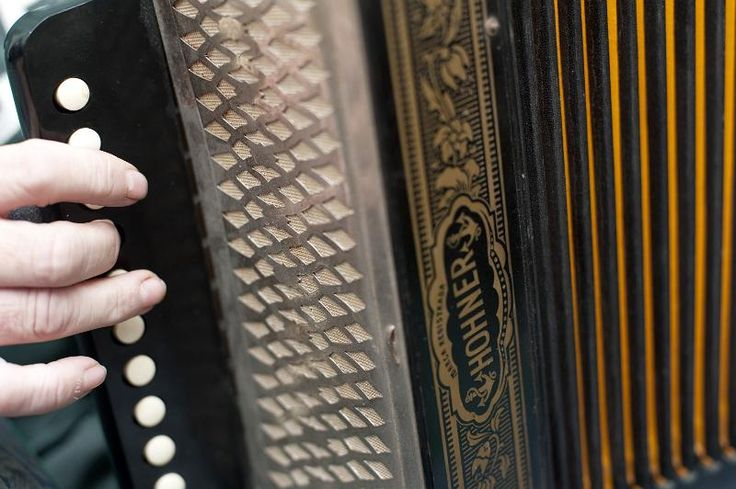 playing an accordion squeezebox - free stock photo from www.freeimages.co.uk
