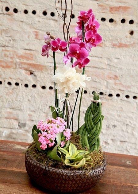 1. Folhagens, calandivas e orquídeas compõem arranjo para presentear.  Quer enfeitar a casa com um arranjo elaborado mas tem dificuldade em compor? Deseja presentear com um belo vaso de flores? Os floristas Marcia Sorgenfrei e Rodrigo Carneiro, da Agapanthus Floricultura - em Curitiba, criaram uma cesta de flores e folhagens que faz vista e é fácil de montar. Nela, espadinhas e lanças-de-são-jorge são combinadas às delicadas orquídeas e calandivas.  Fotografia: Andre Gruby/ Divulgação.
