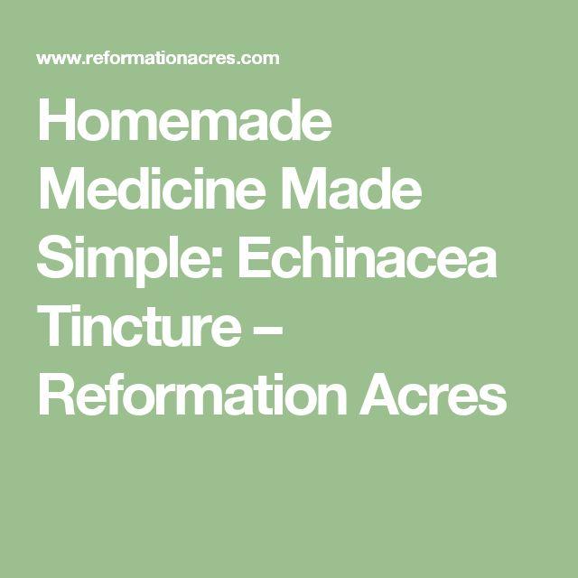 Homemade Medicine Made Simple: Echinacea Tincture – Reformation Acres
