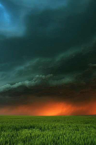 Kansas, June 3, 2011; photo by Jason Branz