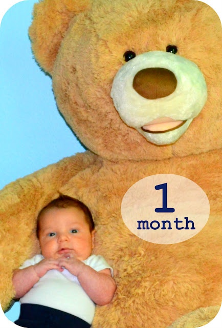 Month Pictures with Giant Teddy Bear