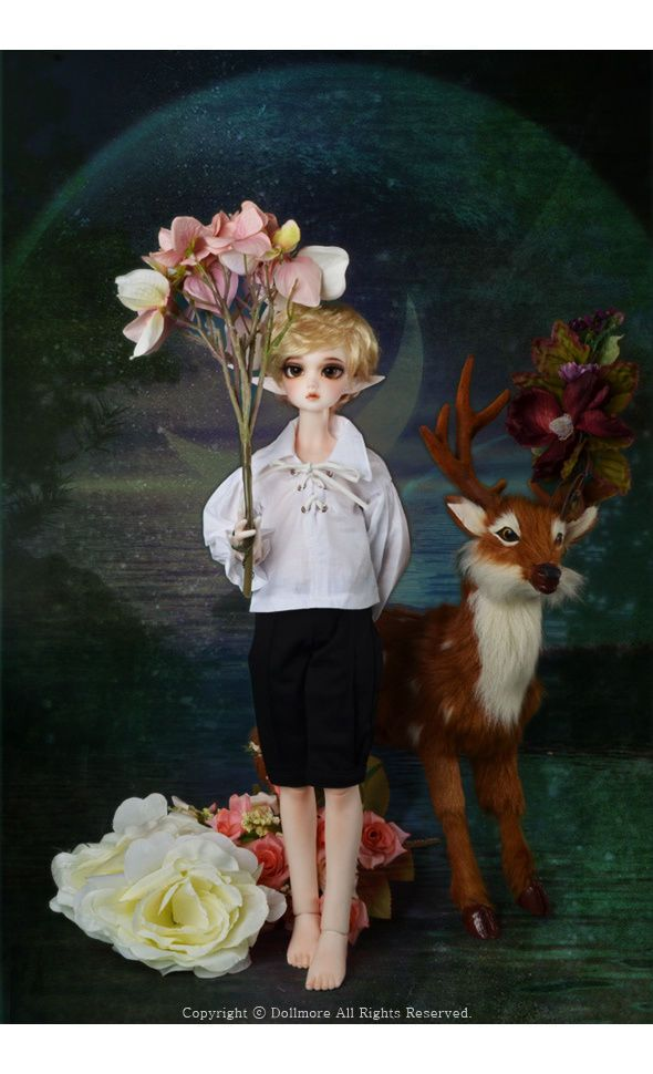 http://www.ebay.com/itm/DOLLMORE-1-4BJD-MSD-DOLL-Kid-Dollmore-Boy-Torrie-Make-up-4-ear-parts-/311769505234?hash=item4896e91dd2:g:6MgAAOSwA3dYZMnA