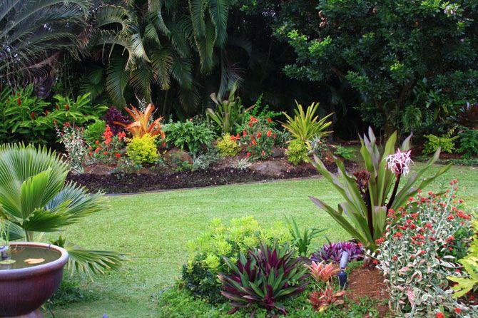 tropical themed garden ideas - Google Search