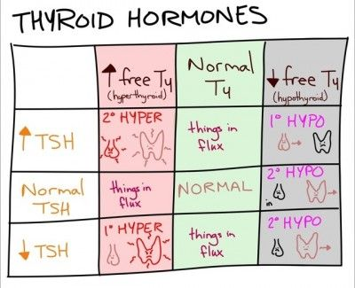 Thyroid hormone differential