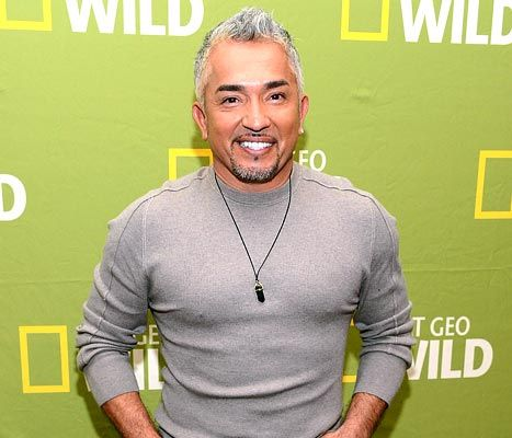 """Cesar Milan, the Dog Whisperer: """"What makes you wise in life is not the successes,"""" he said. """"It's when you go down and come back."""" He spoke on Rock Center about his suicide attempt. The TV star who seemed to be at the top of the world decided to take his own life and swallowed """"a whole bunch of pills."""" He wanted to die after his beloved pit bull died and his wife of 16 years wanted a divorce. His two sons were also estranged blaming him for the divorce. Then his business failed."""