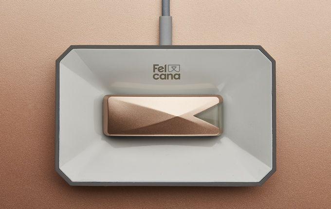 Felcana: amazing smart sensors that listen to your pet by Felcana — Kickstarter