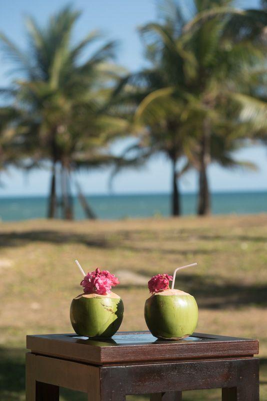 Romance - Vila Galé Marés | Bahia, Brasil