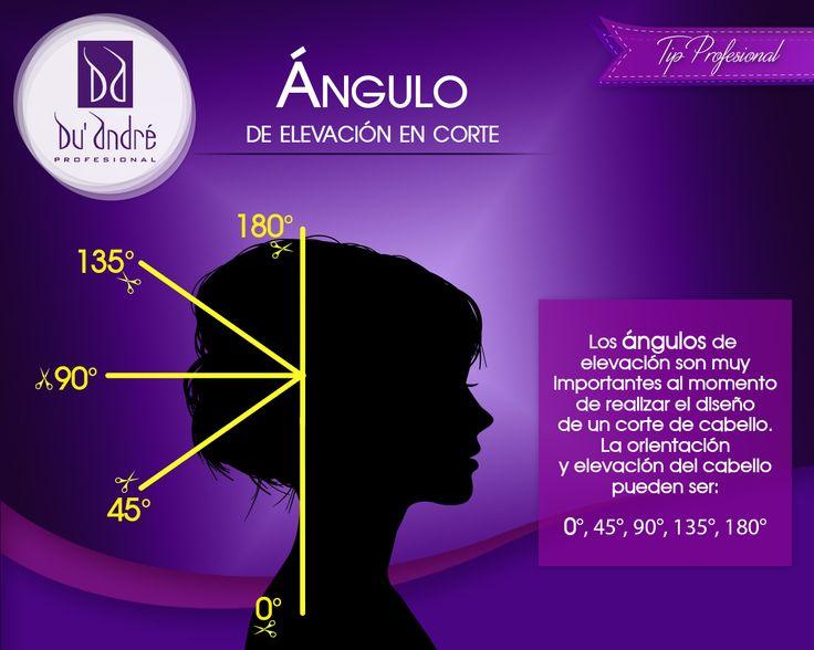¡Recuerda las definiciones básicas de la profesión!  Para realizar un corte es importante que tengas presente los ángulos de elevación así como las formas geométricas. El día de hoy te presentamos uno de los ángulos de elevación utilizados en el corte de cabello.