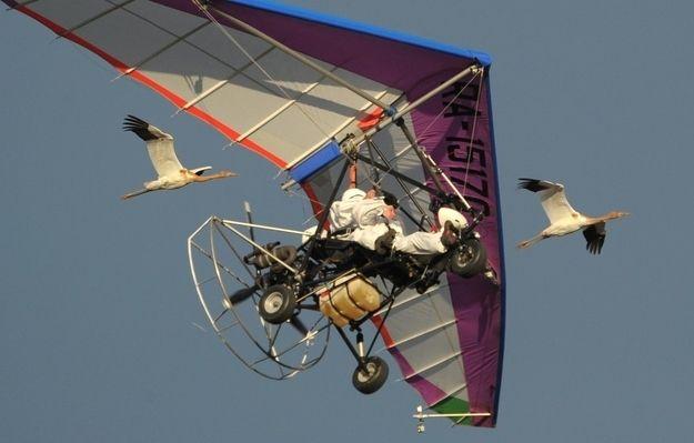 Vladimir Putin Goes Hang Gliding With Cranes - http://f3v3r.com/2012/09/06/vladimir-putin-goes-hang-gliding-with-cranes/