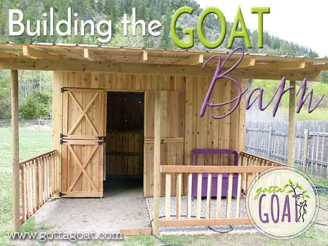 Building the Goat Barn