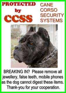 True If You Re Stupid Enough To Enter Cane Corso