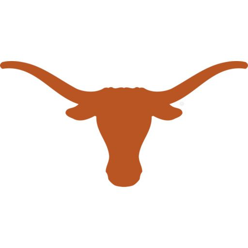 Although I am not a Texas fan this is a good idea for project idea for someone who loves the Texas Longhorns