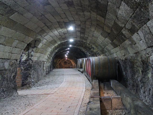 16-17th century cellar