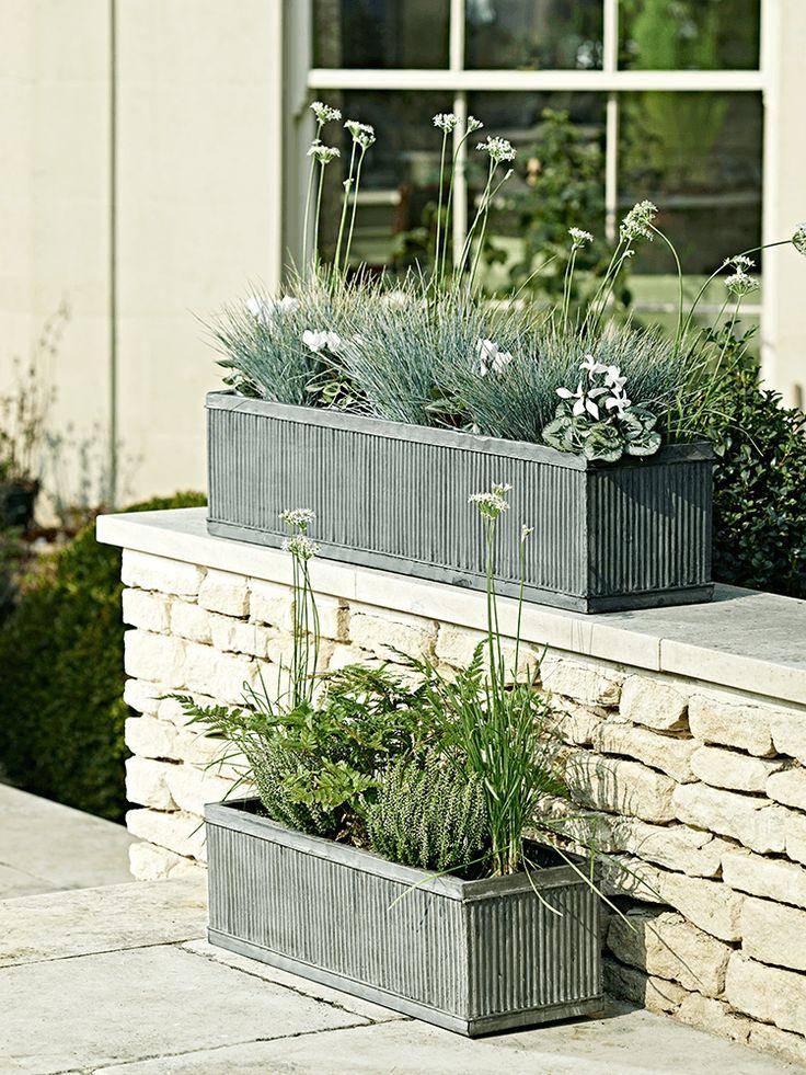 Best 25 Trough Planters Ideas On Pinterest Wooden