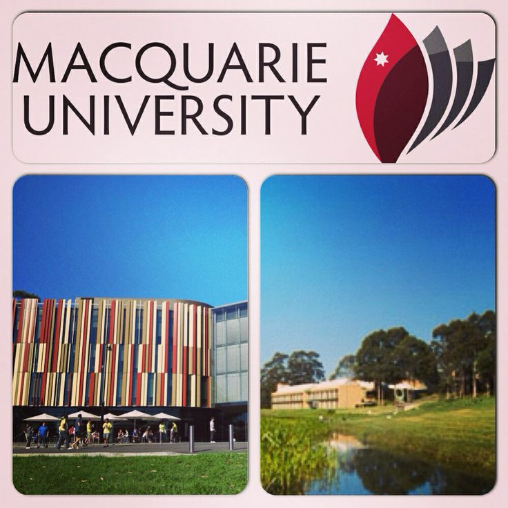 MACQUARIE UNIVERSITY is recognised for its interdisciplinary research and teaching, highly competent graduates and outstanding facilities. It is also the home of Australia's most technologically advanced private hospital in a university campus. As a Special Needs Teacher, I also feel grateful for Macquaries' initiative to come up with Australian Hearing Hub that creates Cochlear for people with hearing impairment.  For more information - http://www.mq.edu.au/  #StudyInAustralia…