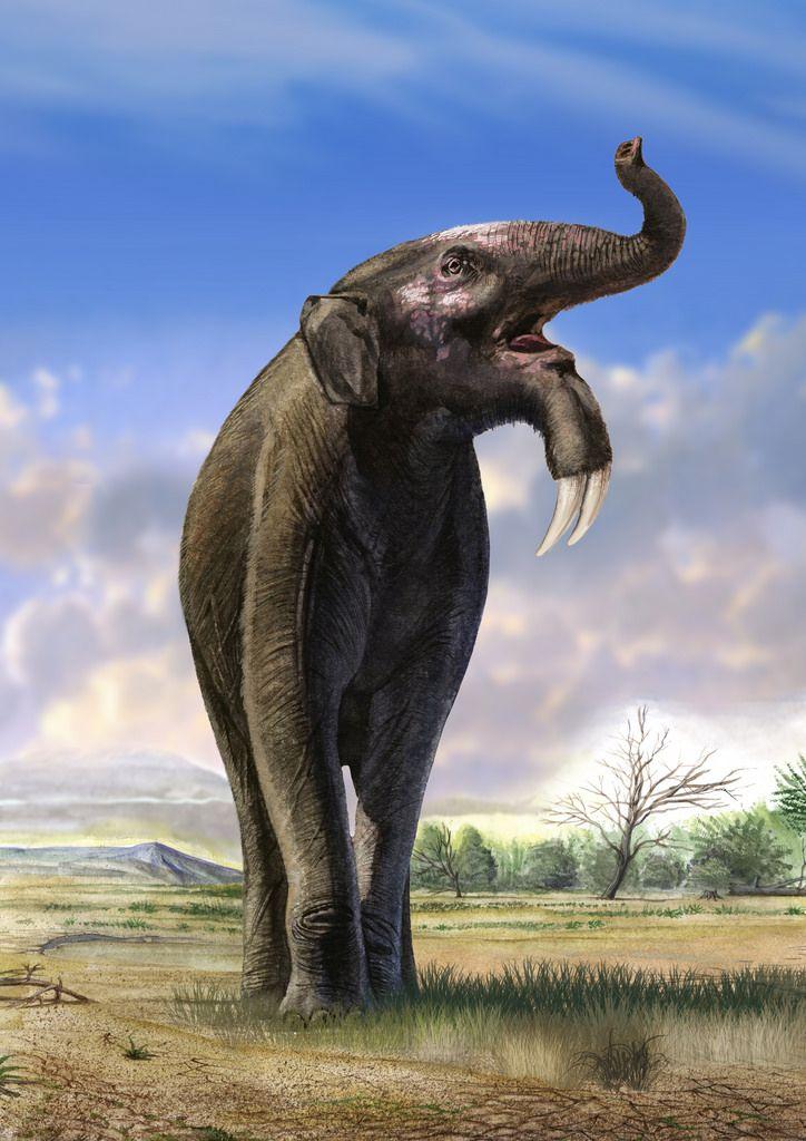 Deinotherium Prehistoric Africa Prehistoric Creatures