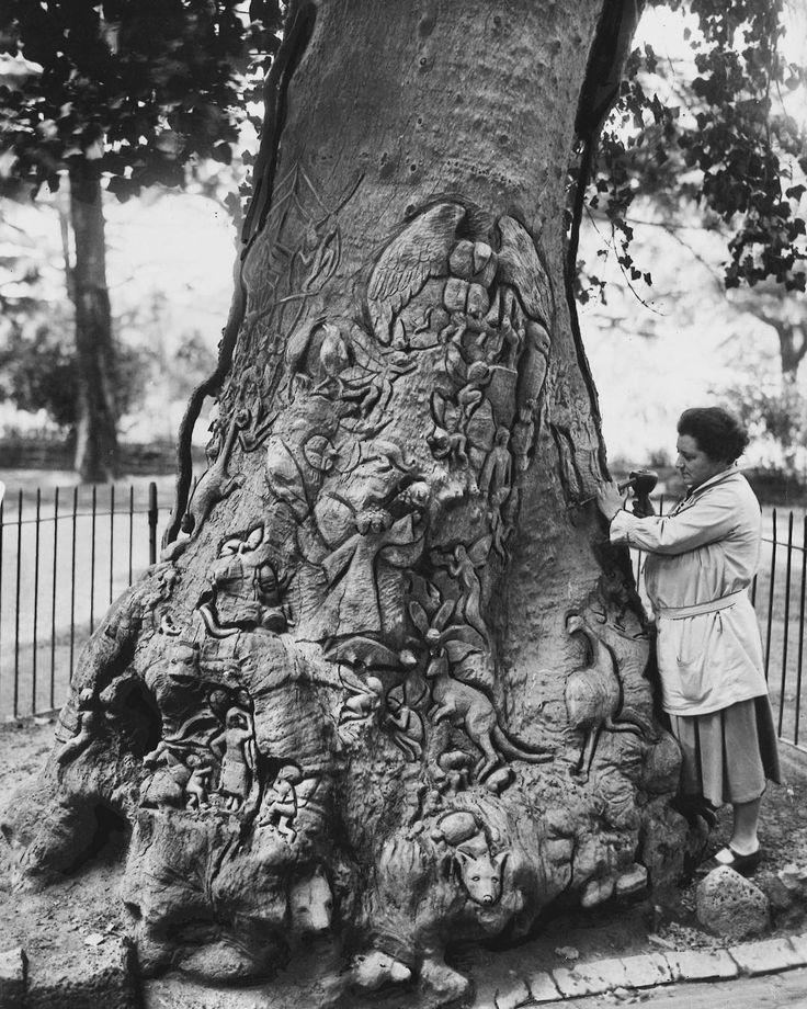 1932 carving of the fairy tree in Fitzroy gardens