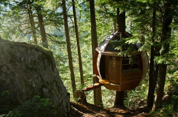 A loft out in the forest that's suspended in the air