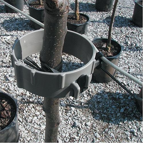 tree support - Google 검색