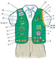 Image result for girl scout badge placement junior