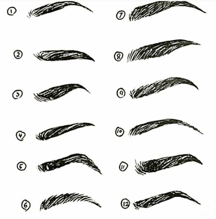 Eyebrow Types