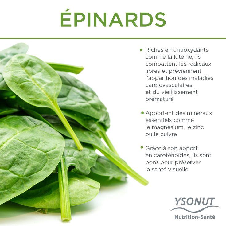 Que contiennent les #épinards ? #Nutrition #Santé